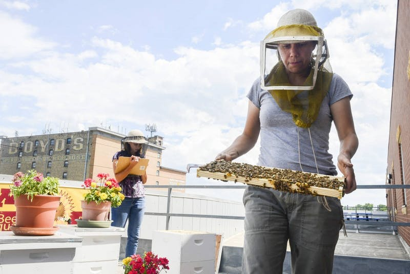 Bee Squad team member Chris Kulhanek carries a frame from a hive at the rooftop apiary at Urban Ventures in south Minneapolis on Monday afternoon. Recent state allocations will partially fund the construction of a new University Bee Lab on the St. Paul campus.