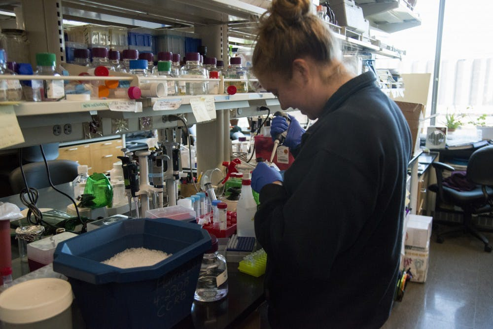 UMN researchers receive $8.5 million grant to better understand breast cancer