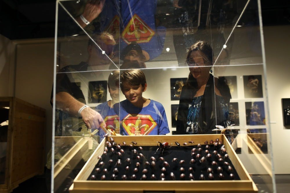 Bell Museum to increase support for visitors with sensory challenges