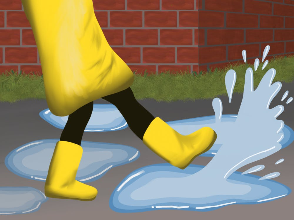 What is National Step In a Puddle and Splash Your Friends Day?