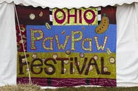 A quilt was created for and displayed during the 18th Annual Ohio Pawpaw Festival last year (FILE)