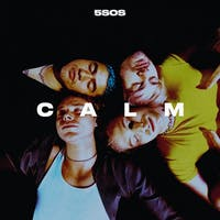 Despite the album being the worst of its catalogue, 5 Seconds of Summer knows how to churn out some hits. (Photo provided via @Gigwise on Twitter)