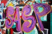 SASP is painted on the graffiti wall on W. Mulberry St. on Tuesday, Feb. 5.