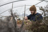 Adam Blaney plants seedlings on his farm in Albany, Ohio, on March 2, 2020.