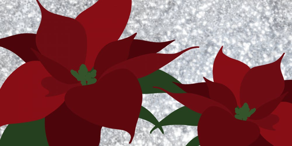 Poinsettias signify the holiday season