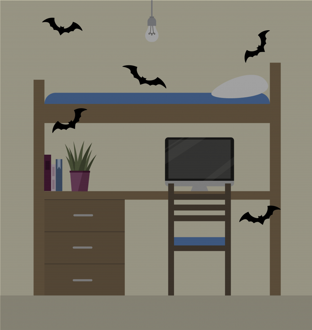 What students should do if they find bats in residence halls