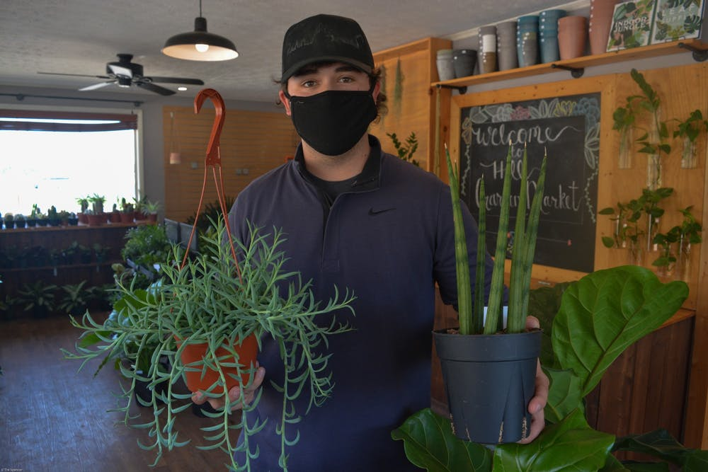 Hill Landscaping LLC and Hill Garden Market knows plants