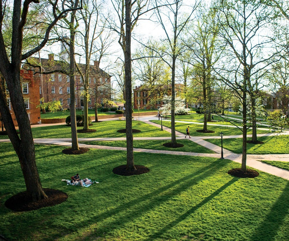 The top 5 spots to hammock at Ohio University this fall