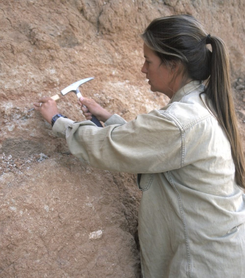 Professor and paleontologist Nancy Stevens to speak at 2018 Fall Commencement