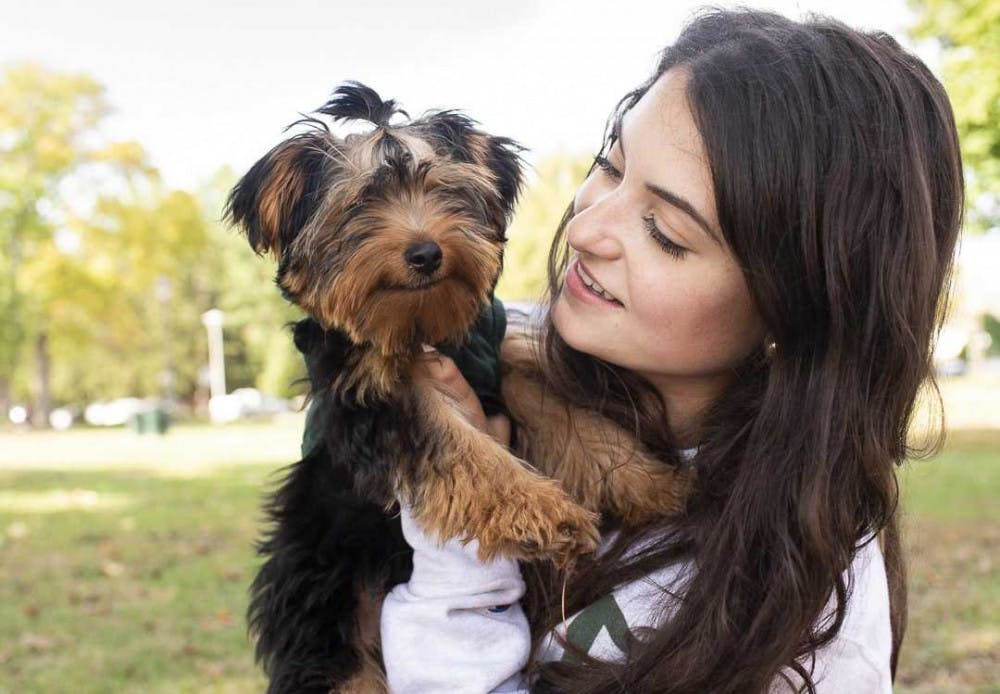 OU sees increase of emotional support animals on campus