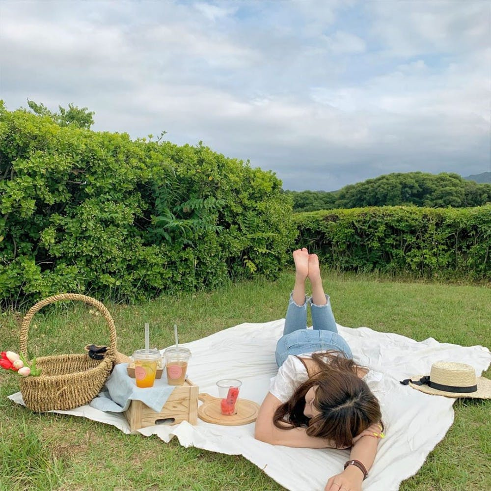 Here's how to plan the perfect picnic for International Picnic Day