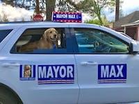 Maximus Mighty Dog Mueller II was elected the mayor of Idyllwild, California. (via @Informativo102 on Twitter)