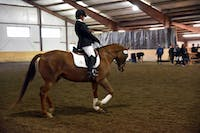 Camille Stewart rode Kermit in her Dressage test for the Otterbein home show