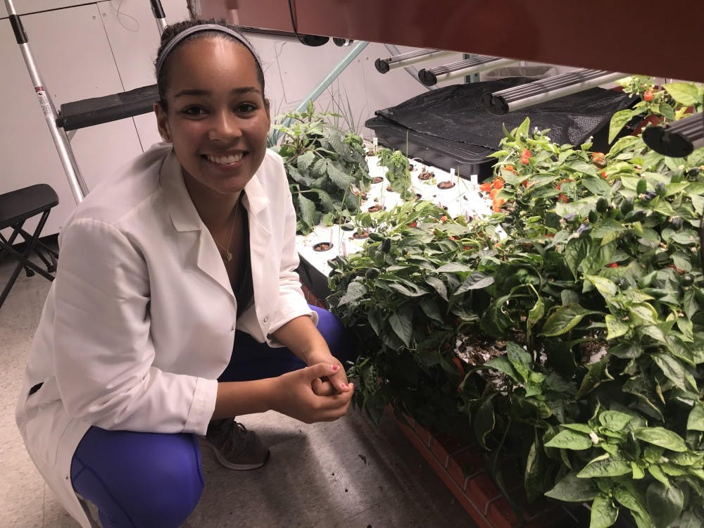 Kor Akiti '19 poses beside plants at the vertical farm in Moffet Laboratory. Photo Courtesy of Kor Akiti