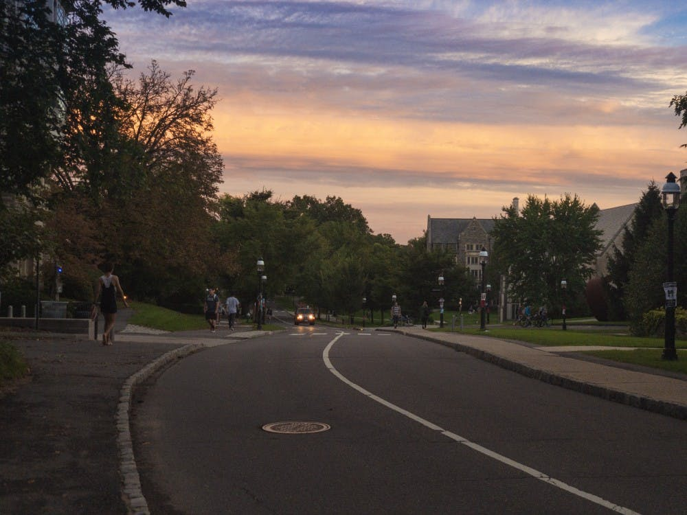 Elm Drive, which runs through campus. Photo Credit: Ans Nawaz / The Daily Princetonian