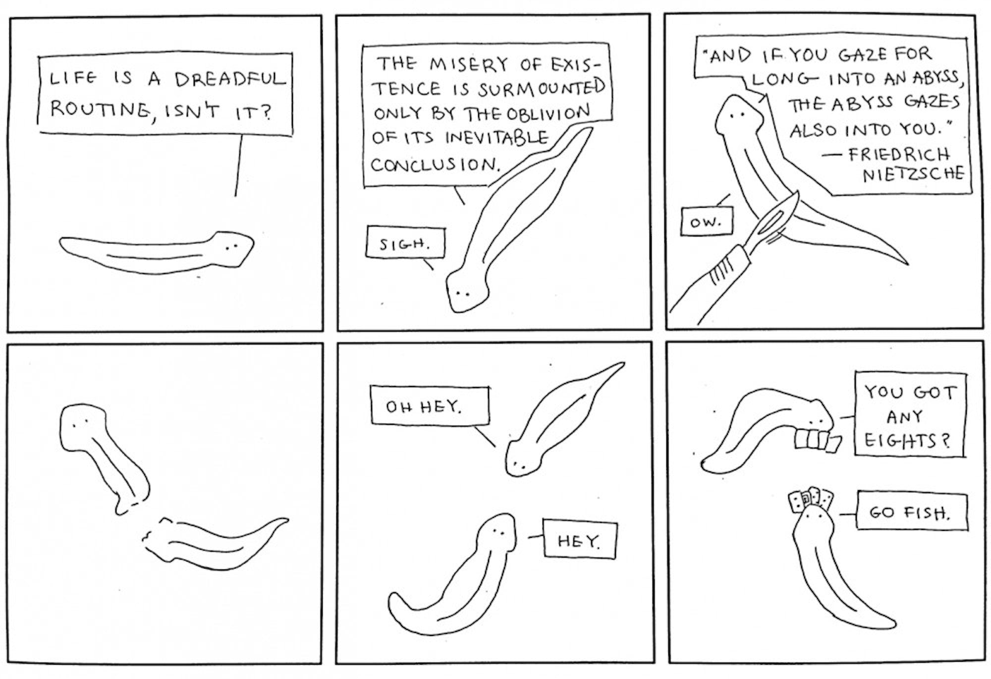 lonely-planarian-terry-oshea-16