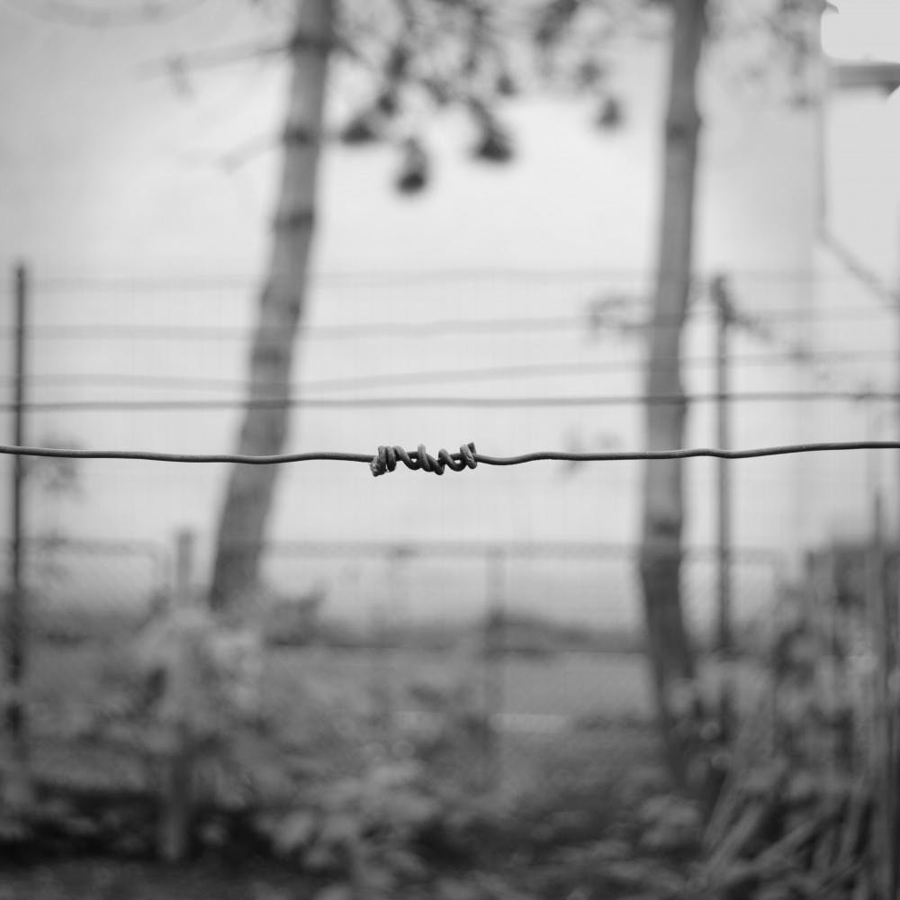barbed-wire-black-and-white-depression-341117