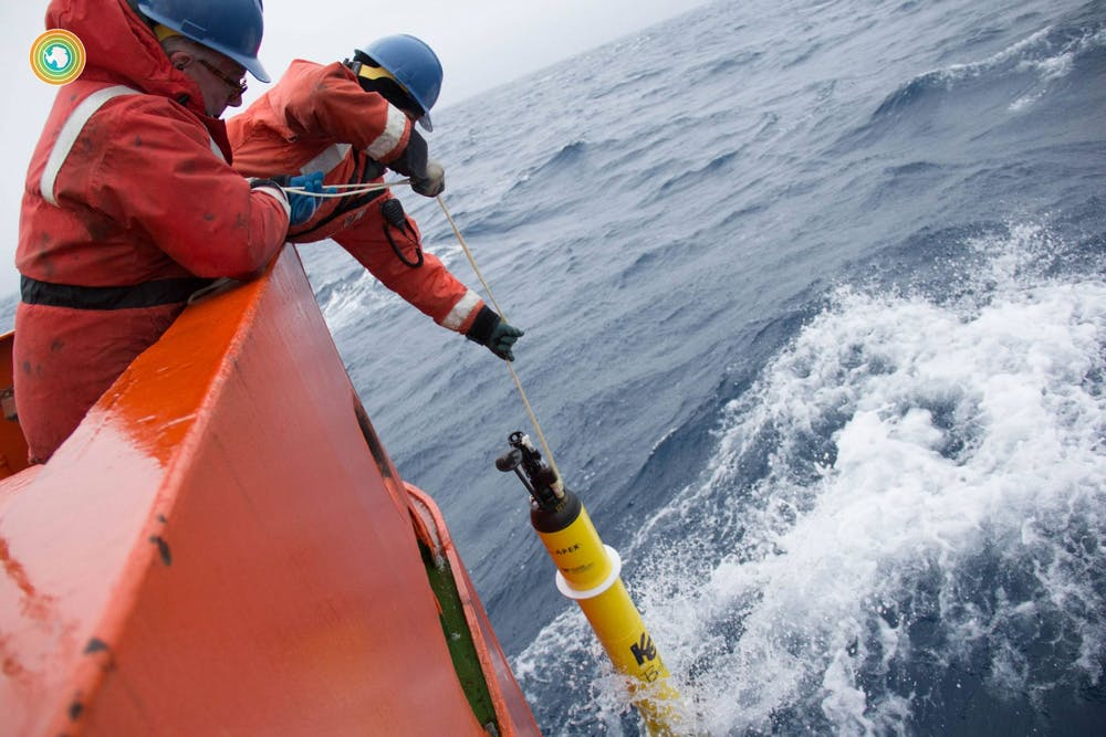 <p>Researchers submerge a single SOCCOM robotic float into the Southern Ocean. Several floats constitute an array that communicates collected biogeochemical data with satellites that hover over the Southern Ocean. Courtesy of SOCCOM Project, Princeton University</p>
