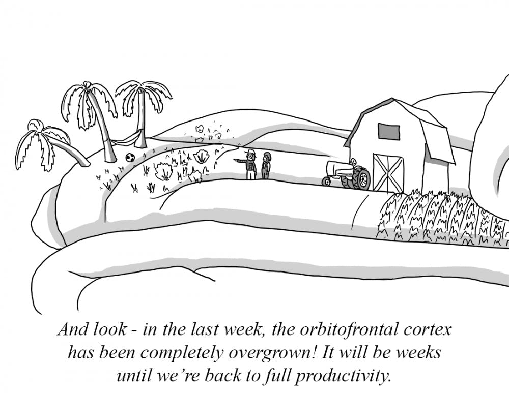 your-brain-on-vacation