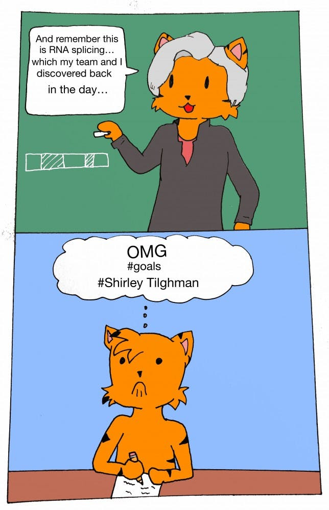 Tilghman Way