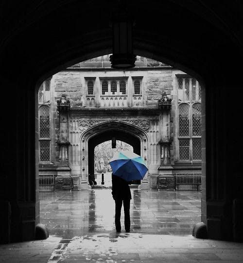 1bc7f508153b9daff100ebdfc22304e5--princeton-rainy-days