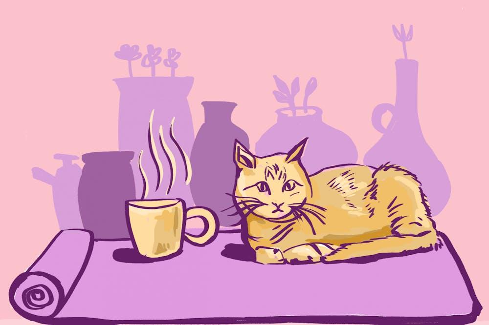 andrea-gomez-cat-cafe-pottery-illy