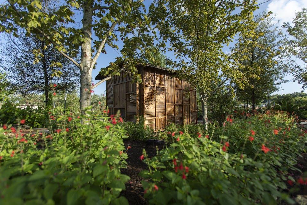 houston-botanic-garden-curiosity-cabinet-in-upland-forest-in-global-collection-garden