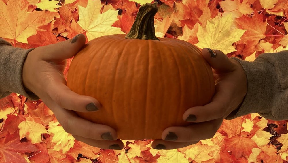 Alternatives to celebrate Halloween