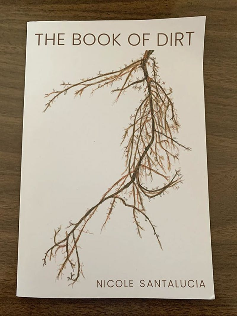 Book Of Dirt (edited).jpg