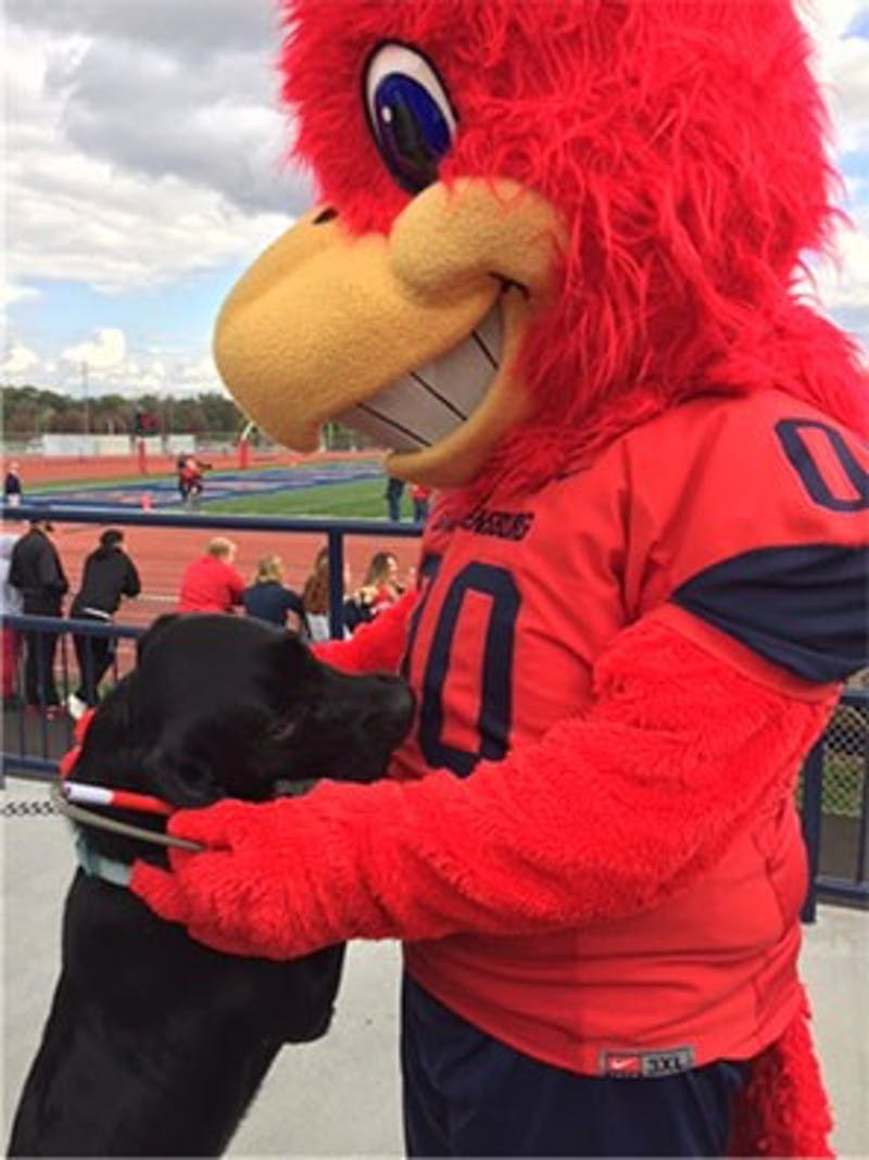 Seeing Eye puppy Herman hugs the Red Raiders' mascot, Big Red, during an SU football game.
