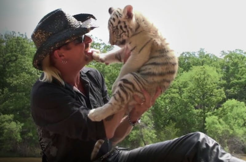"Joe Exotic is a controversial big cat breeder and salesman featured in ""Tiger King: Murder, Mayhem and Madness"", a new Netflix drama based on real-life events."