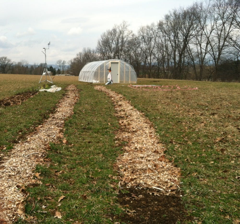 SU Farm Club plants crops for campus dining halls