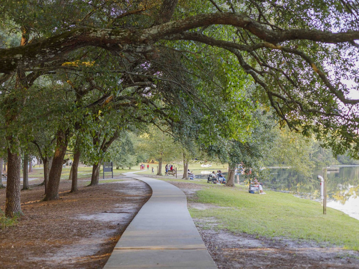 People sit, read, talk and enjoy the South Carolina weather along a paved path through Sesquicentennial State park.