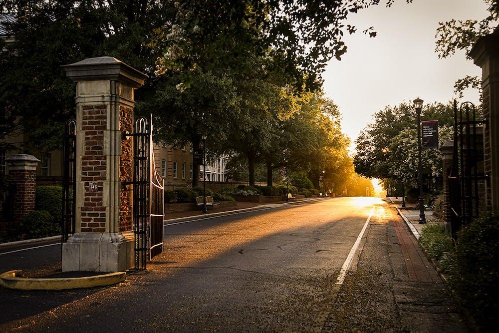 <p>Light streaming through the trees on Greene Street. &nbsp;</p>