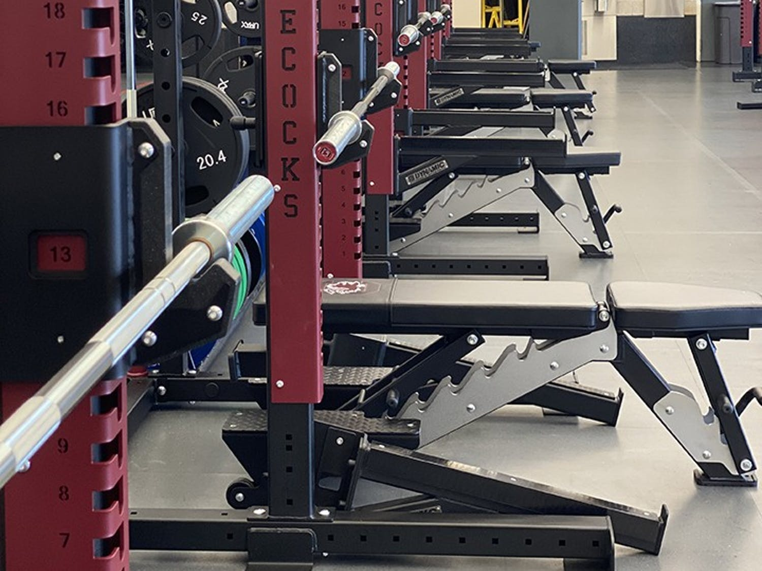 New rows of bench presses and squat racks have been added to the Strom Thurmond Wellness and Fitness Center.
