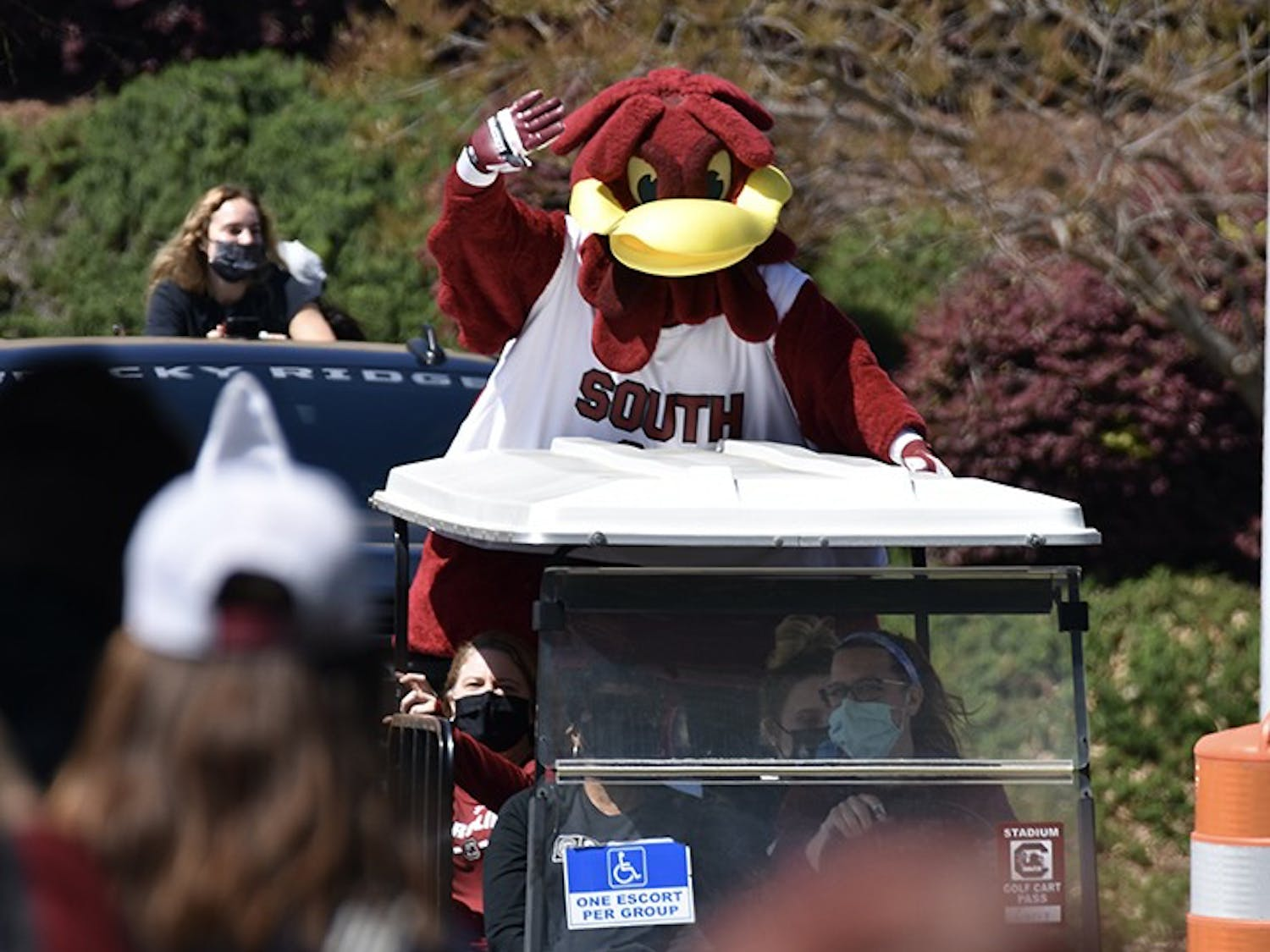 A golf cart leads the procession of Gamecock women's basketball players, with Cocky waving at the team's fans from the back of it.