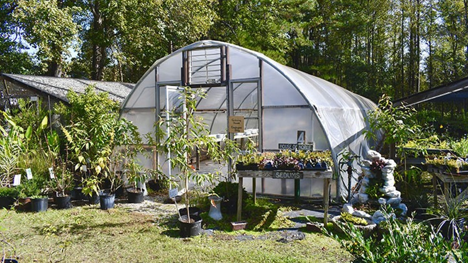 "One of Mill Creek Greenhouses' ""Growing Houses."" Only employees have access to it."