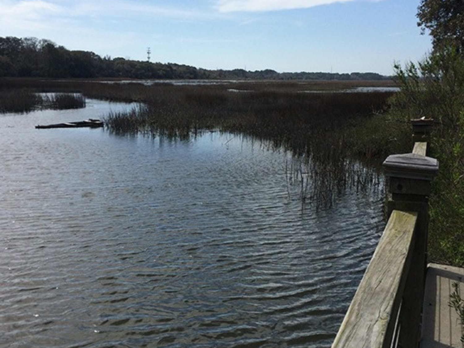 Hilton Head Island is the perfect small beach getaway from the stresses of everyday life.