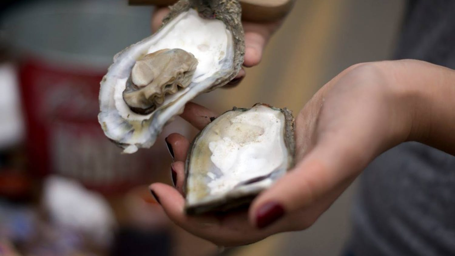 This year was the 20th anniversary of the South Carolina Oyster Festival, which included family activities, two stages for entertainersand, of course, oysters.