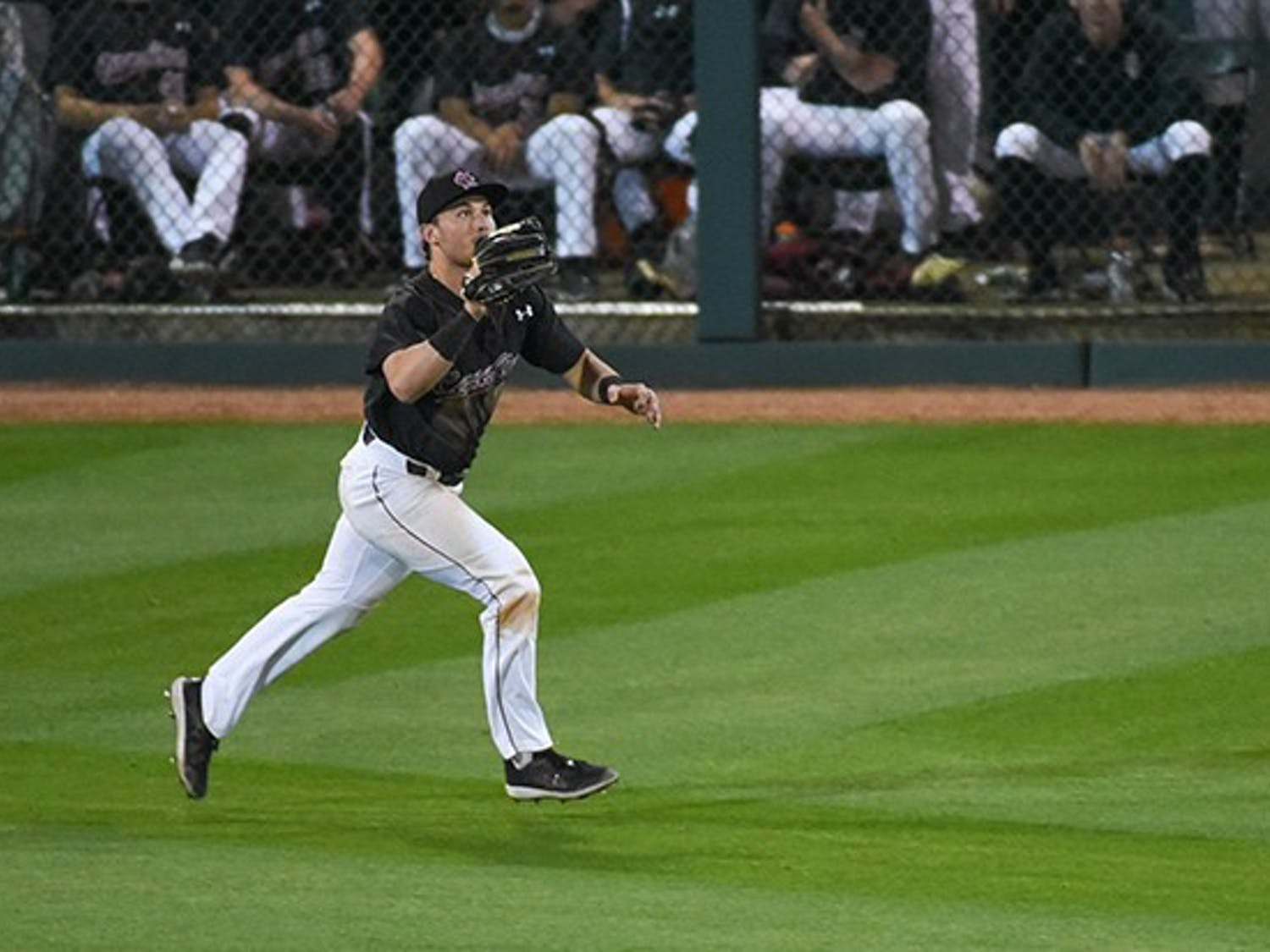 Gamecock junior outfielder Brady Allen runs to catch the ball after it was hit by the opposing team.
