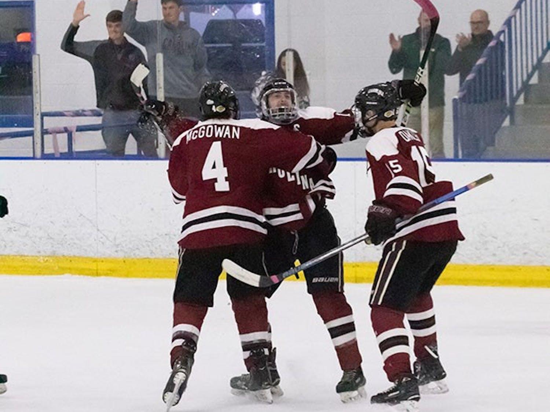 South Carolina club hockey players celebrate a goal.