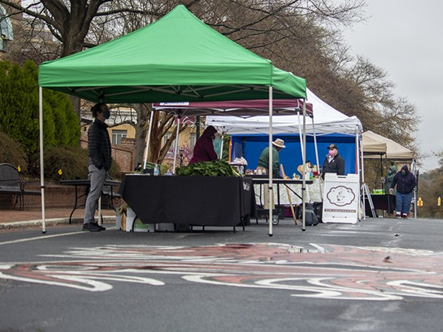 Vendors and campus organizations such as the Carolina Food Company and Sustainable Carolina return to Greene Street with fresh produce, succulents and more at the recently revived Healthy Carolina Farmers Market. The market is on Greene Street every Tuesday from 8 a.m. to 2 p.m.