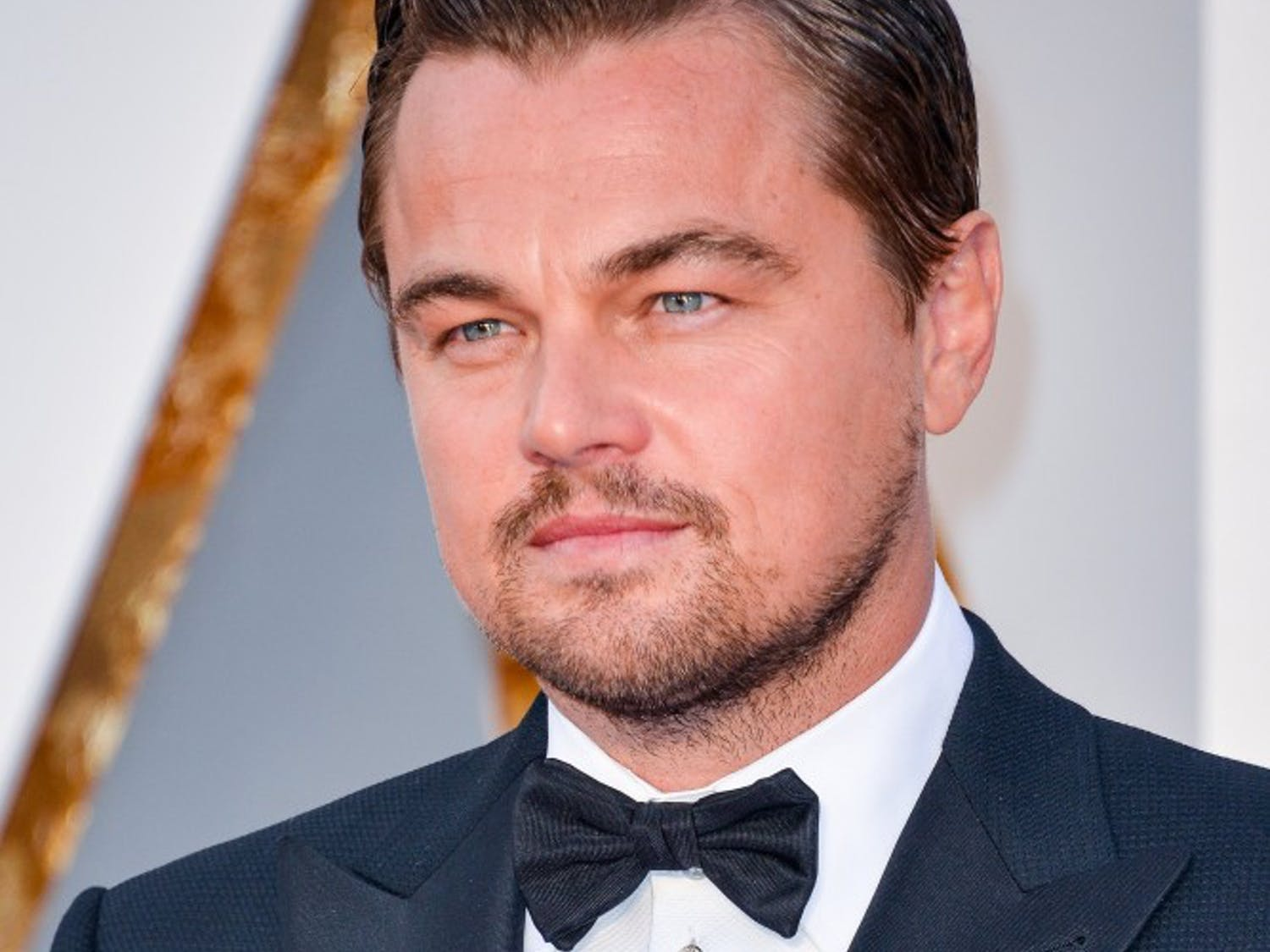 Leonardo DiCaprio arrives at the 88th Academy Awards on Sunday, Feb. 28, 2016, at the Dolby Theatre in Hollywood. (Sthanlee B. Mirador/Sipa USA/TNS)
