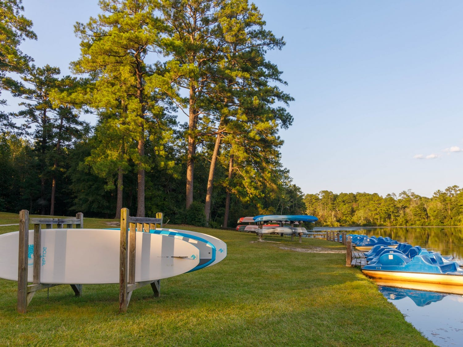 Paddle boats, canoes and water boards can be found on the side of the pond at Sesquicentennial State Park. The park also offers many spaces to hike, camp or relax.