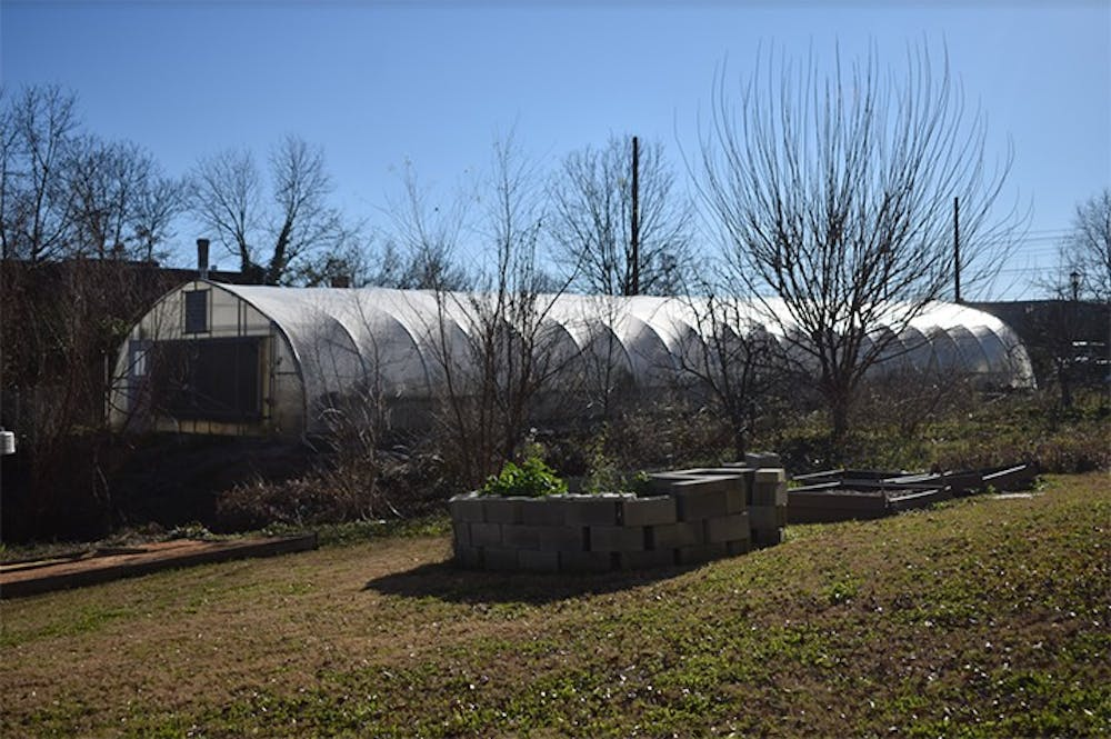 A greenhouse that is available for students and staff to grow produce at Sustainable Carolina Garden on Feb. 4, 2021.