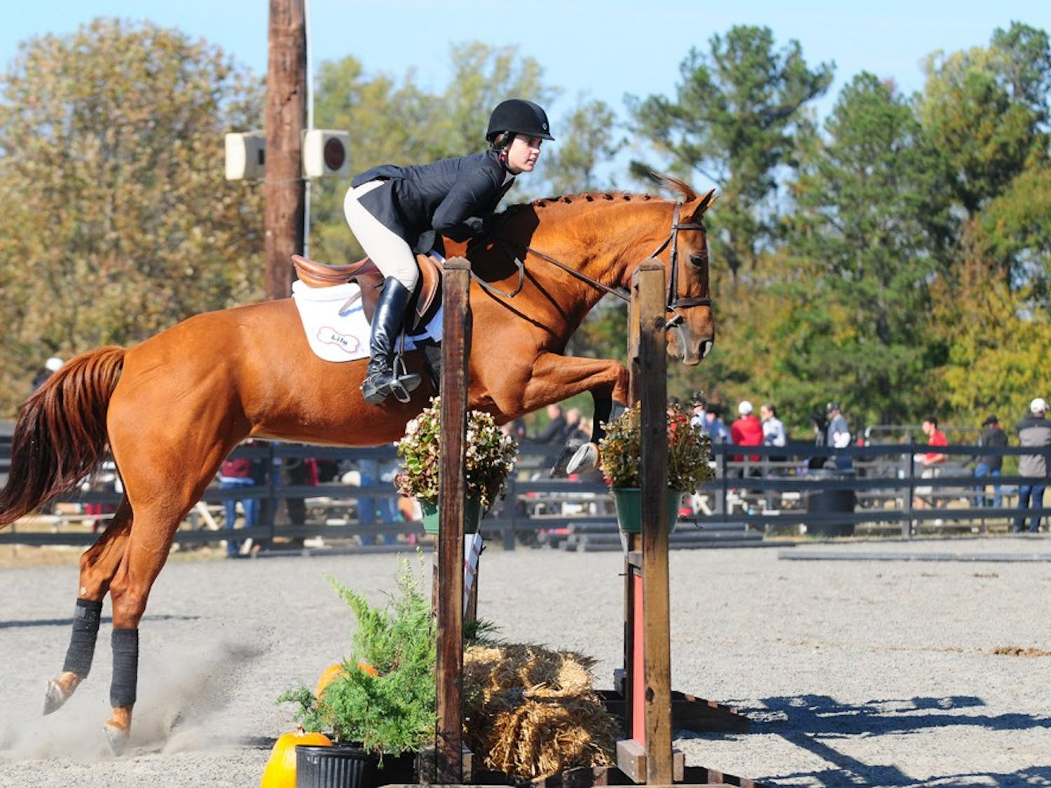 Senior Kimberly McCormack (above) and the equestrian team will compete at nationals after winning the SEC Championship.