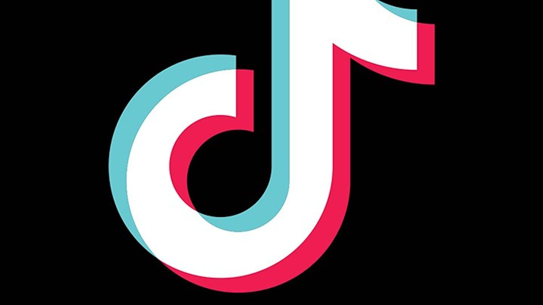 The Tiktok app (musical.ly)
