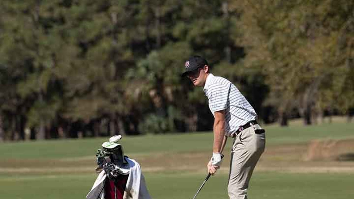 A starting player for the South Carolina golf team looks ahead as he prepares to hit the ball.