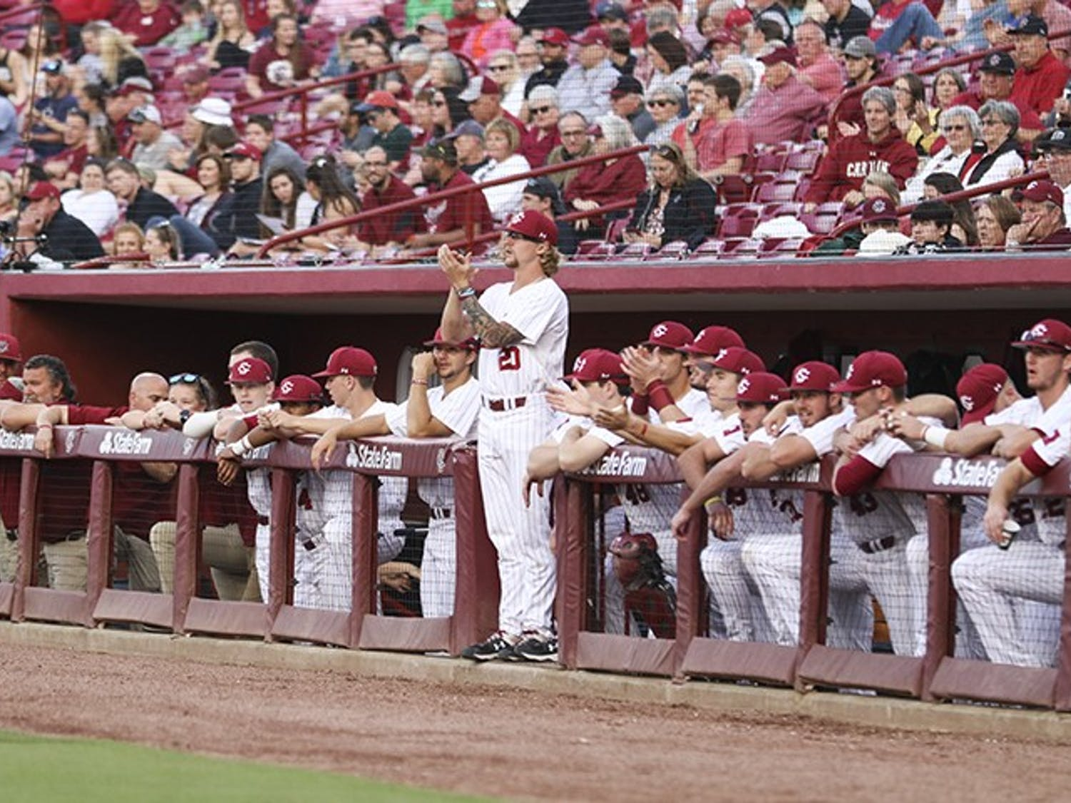 South Carolina baseball players cheer from the dugout during the first game against Auburn at Founders Park on Friday.