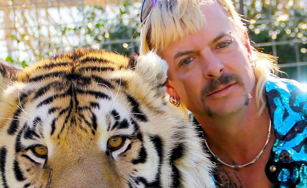 netflix-tiger-king-views